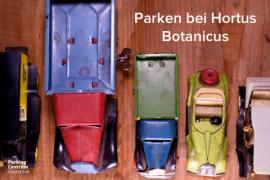 hortus-botanicus-amsterdam